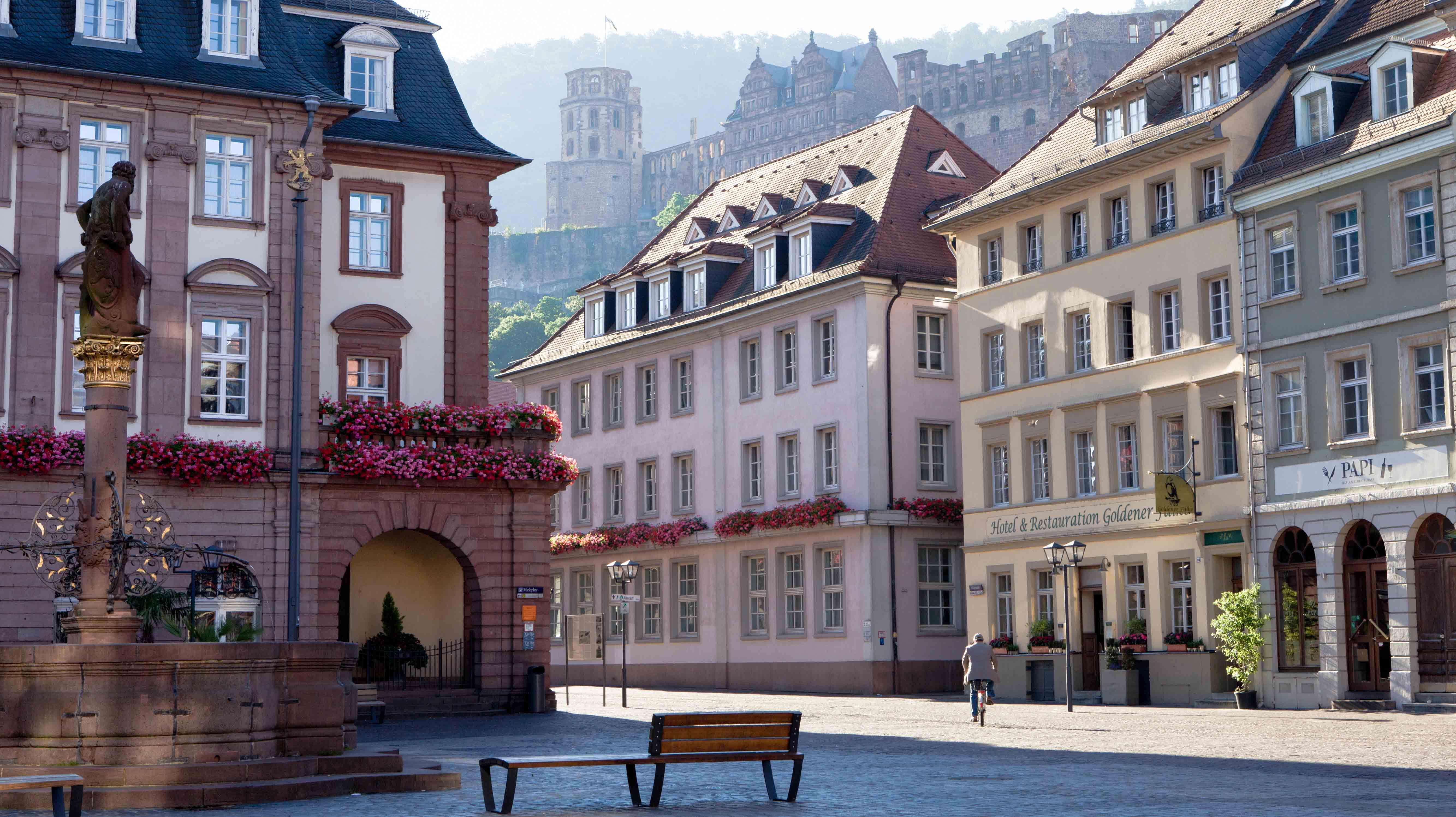 Heidelberg picture